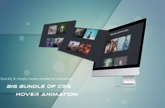 css hover animation